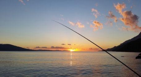 wanaka fishing charter